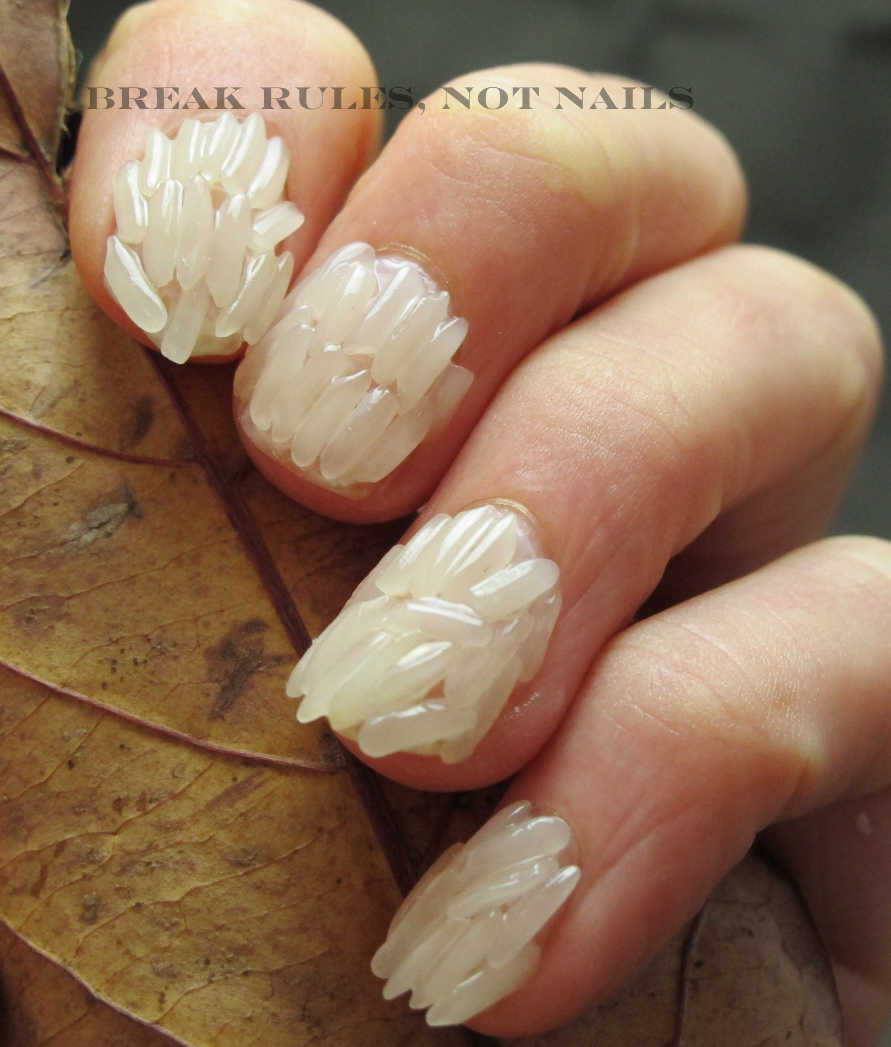 Rice Nail Art Break Rules Not Nails